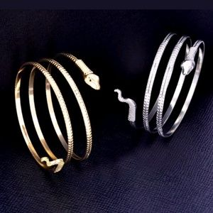 Jewelry - Snake bracelets in both silver and gold.